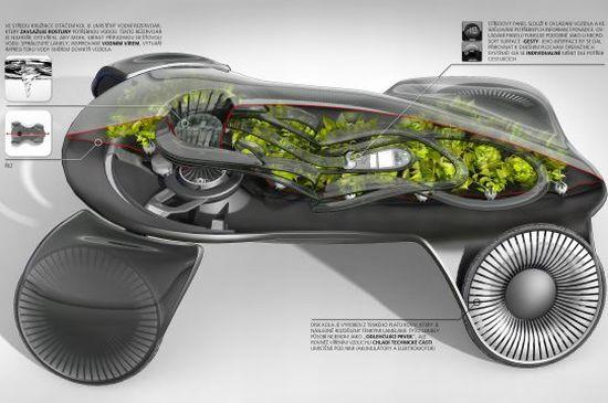 photosynthetic-car