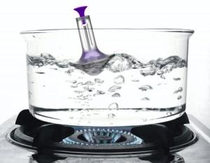 Bouee eau bouillante cuisine gadget siffle
