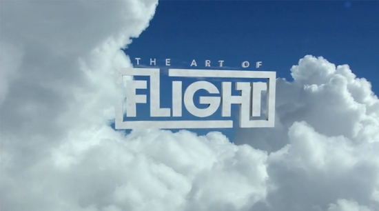 The Art of Flight affiche