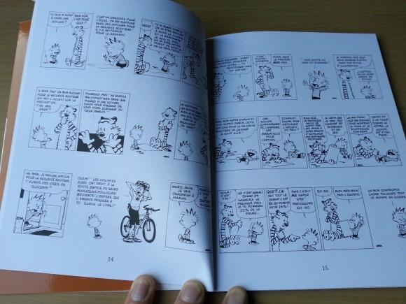 BD-Calvin-Et-Hobbes-Que-de-misere-humaine (3)