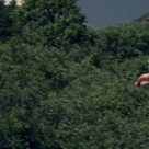 Split-Of-A-Second-Basejump-Wingsuit-2