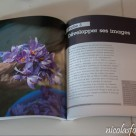 Livre-Photoshop-Lightroom-6-CC (2)